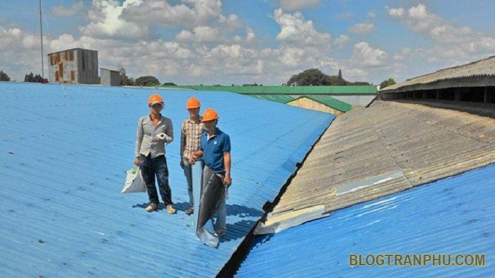 Nam Thành – Đơn vị sửa mái tôn giá rẻ và uy tín tại Hà Nội