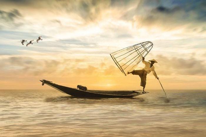 Nằm ngủ mơ thấy bắt cá đánh con gì?